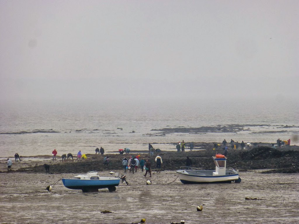 Marée du siècle à Kervoyal en Damgan 56750