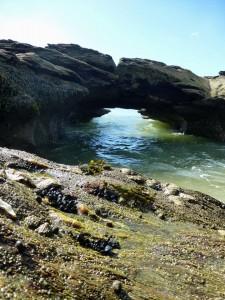 Le Pont Saint Sauveur à Kervoyal
