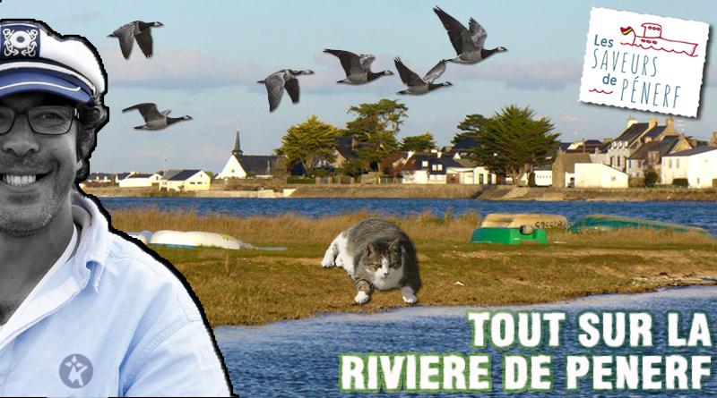 article-24 juin 2016 rivière de Pénerf en Damgan