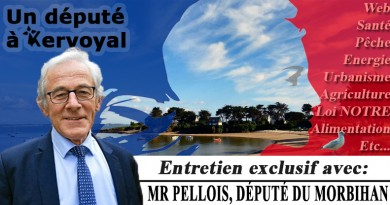 article-2-dec-2016-herve-pellois-kervoyal-en-damgan-v2
