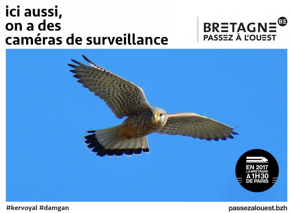 passez-à-louest-kervoyal-en-damgan-morbihan-caméras-de-surveillance