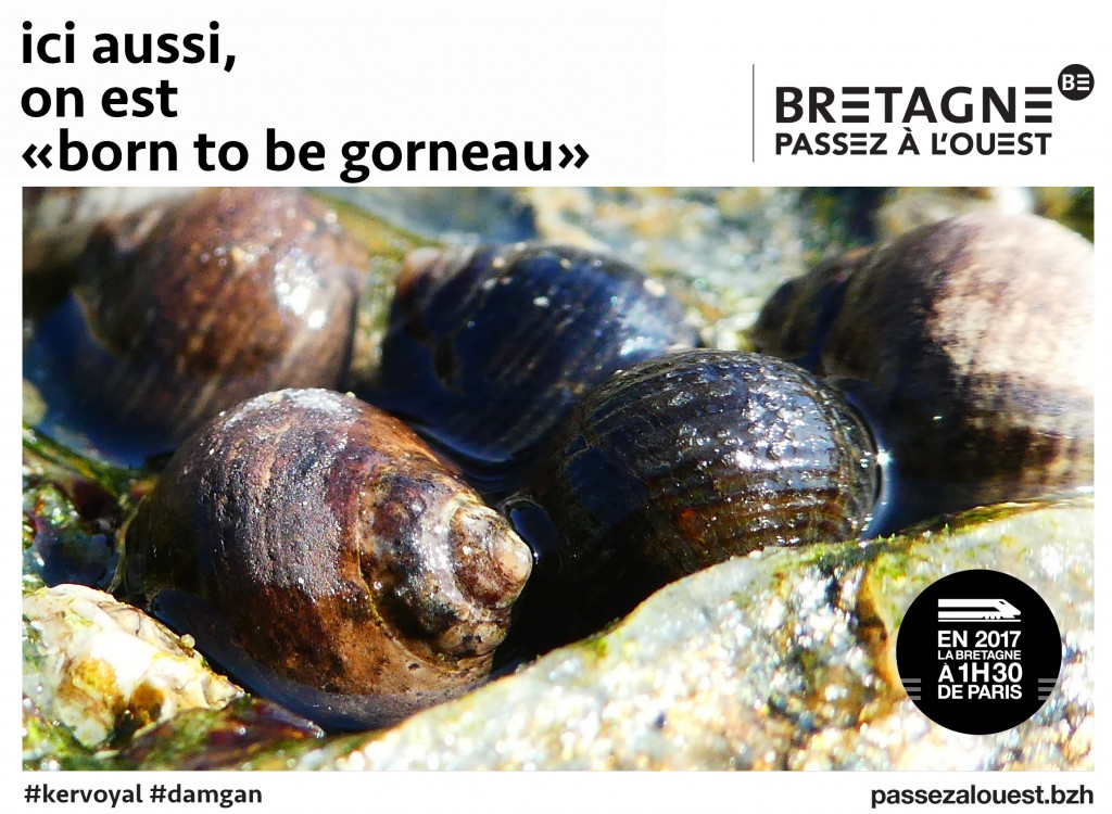 passez-à-louest-kervoyal-en-damgan-morbihan-on-est-born-to-be-borneau