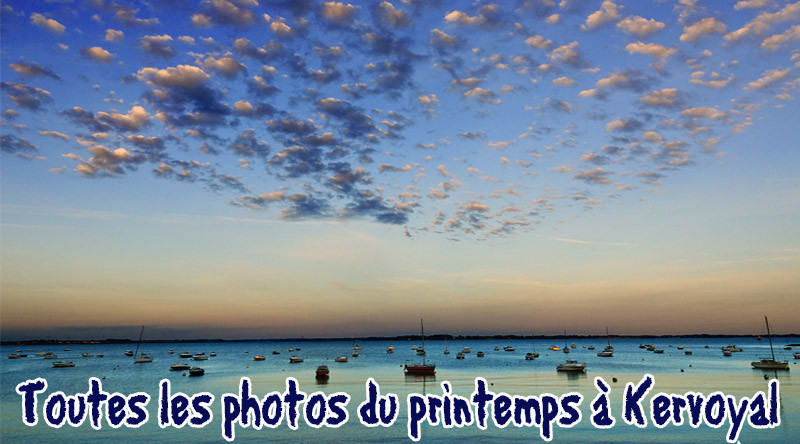 articles photos printemps 2018 kervoyal en damgan