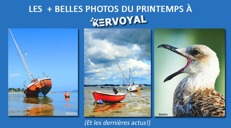 Voilà l'été et les dernières nouvelles de kervoyal + Nos photos du printemps