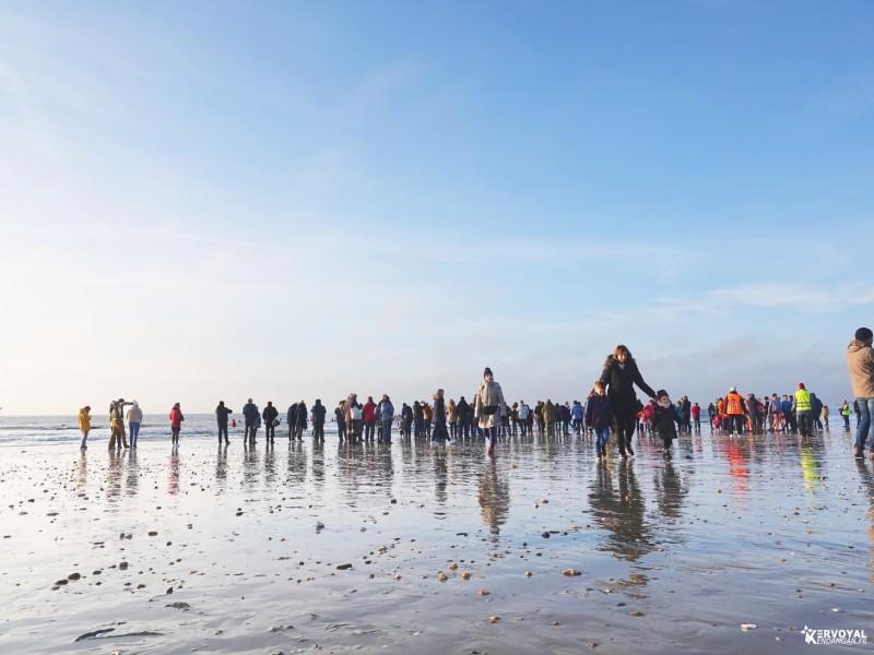 bain de noêl kervoyal en damgan 29-12-2019- marche aquatique des vénètes (7)