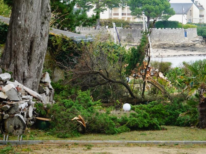 la tempête alex à kervoyal en damgan morbihan (12)