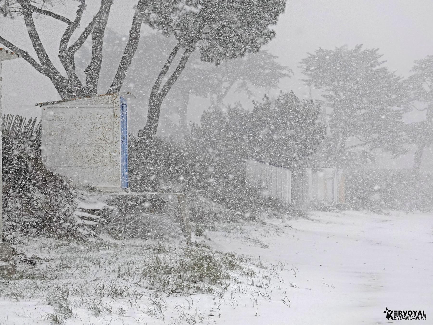 neige à kervoyal 11 février 2021 damgan morbihan (25)