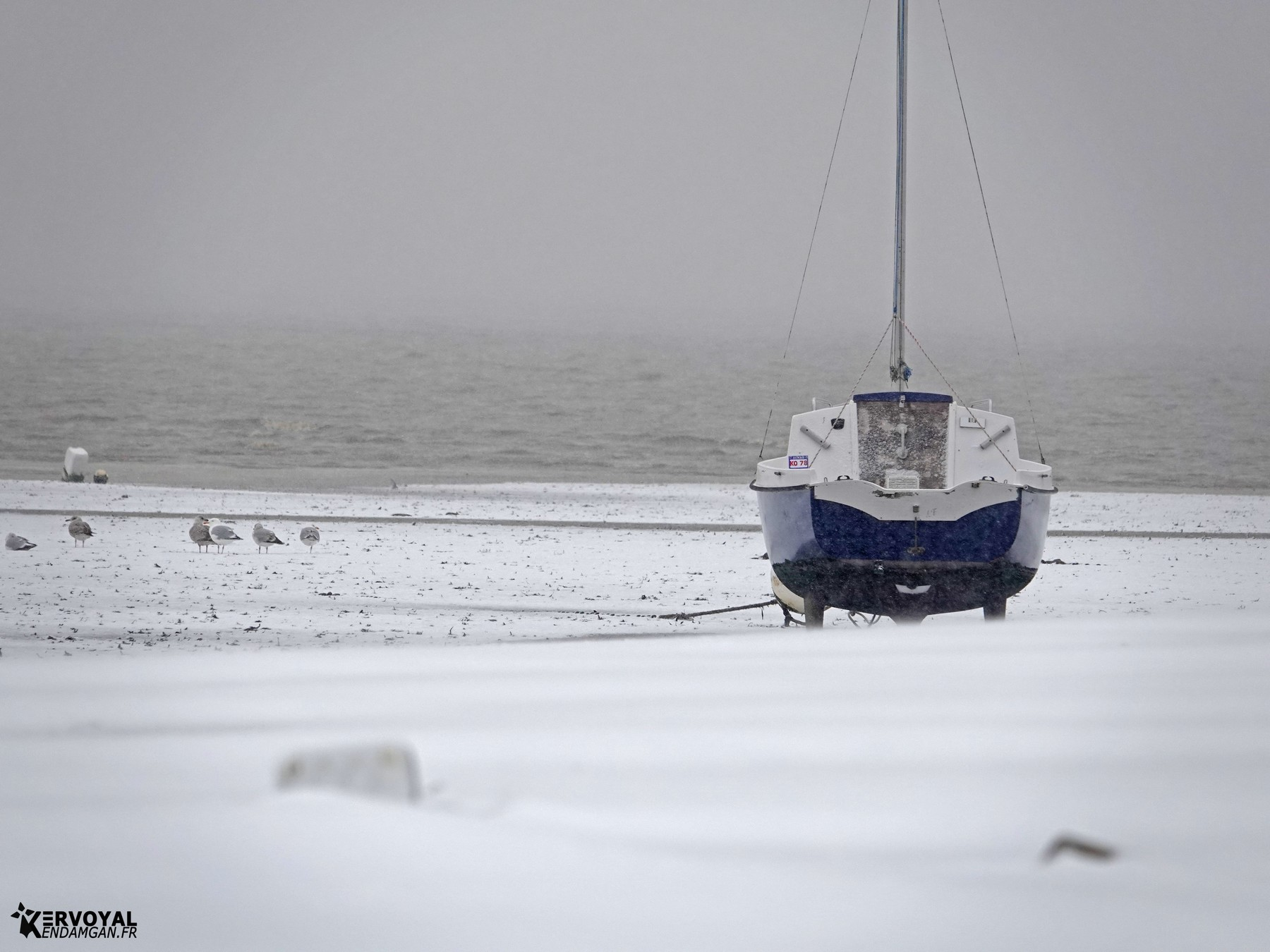 neige à kervoyal 11 février 2021 damgan morbihan (38)