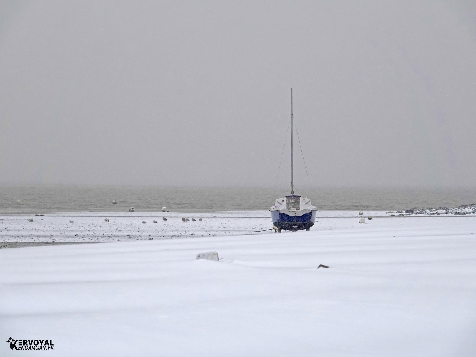 neige à kervoyal 11 février 2021 damgan morbihan (39)