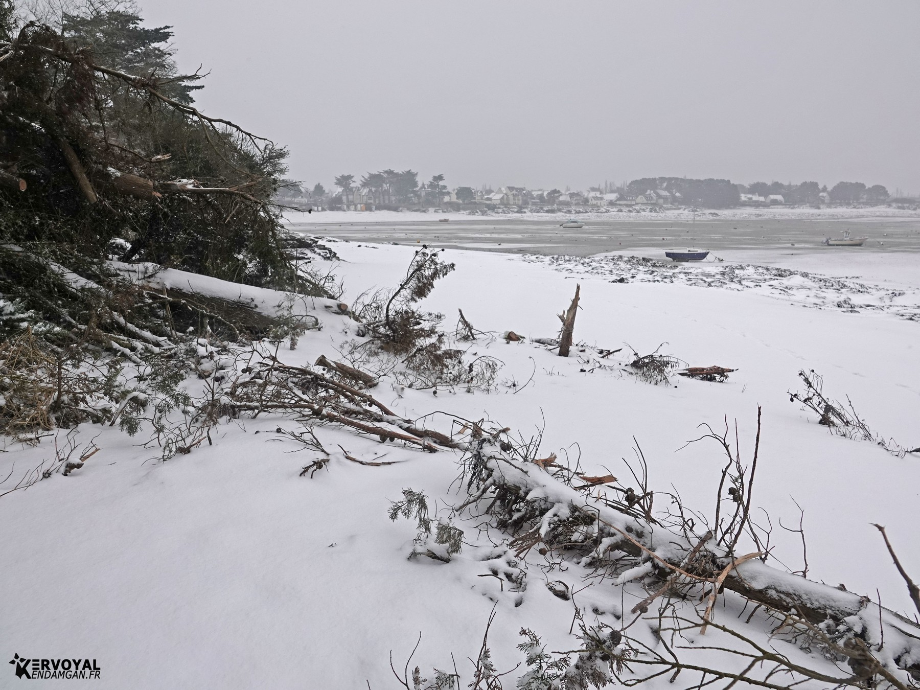neige à kervoyal 11 février 2021 damgan morbihan (40)