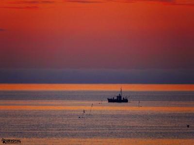 lever de soleil kervoyal damgan automne 2020 (13)