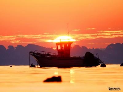 lever de soleil kervoyal damgan automne 2020 (14)