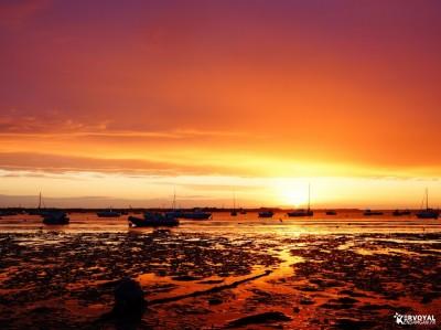 lever de soleil kervoyal damgan automne 2020 (15)