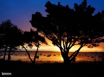 lever de soleil kervoyal damgan automne 2020 (16)