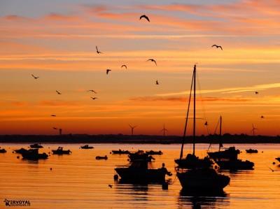 lever de soleil kervoyal damgan automne 2020 (20)