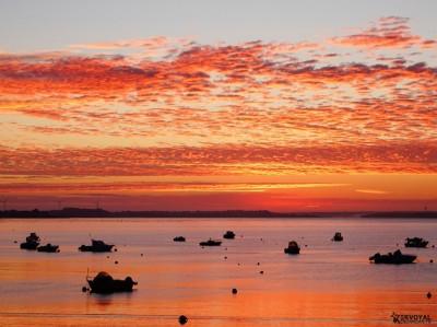 lever de soleil kervoyal damgan automne 2020 (26)