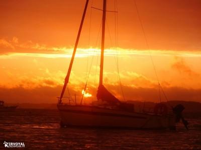 lever de soleil kervoyal damgan automne 2020 (36)