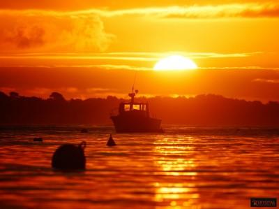 lever de soleil kervoyal damgan automne 2020 (38)