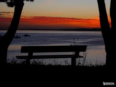 lever de soleil kervoyal damgan automne 2020 (7)